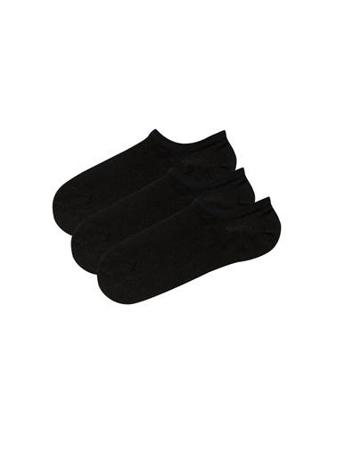 Penti Siyah Super Fit 3Lu Babet Çorabı Siyah